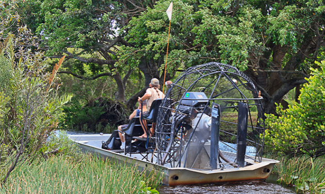 Exciting Airboat Tour